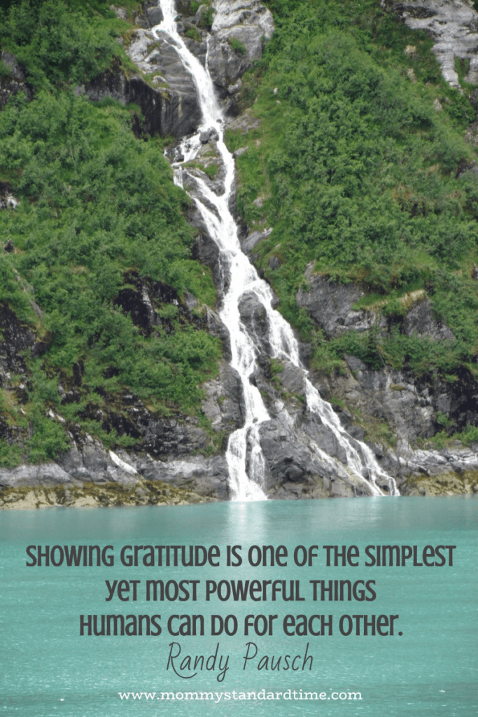 showing gratitude is one of the simplest yet most powerful things humans can do for each other