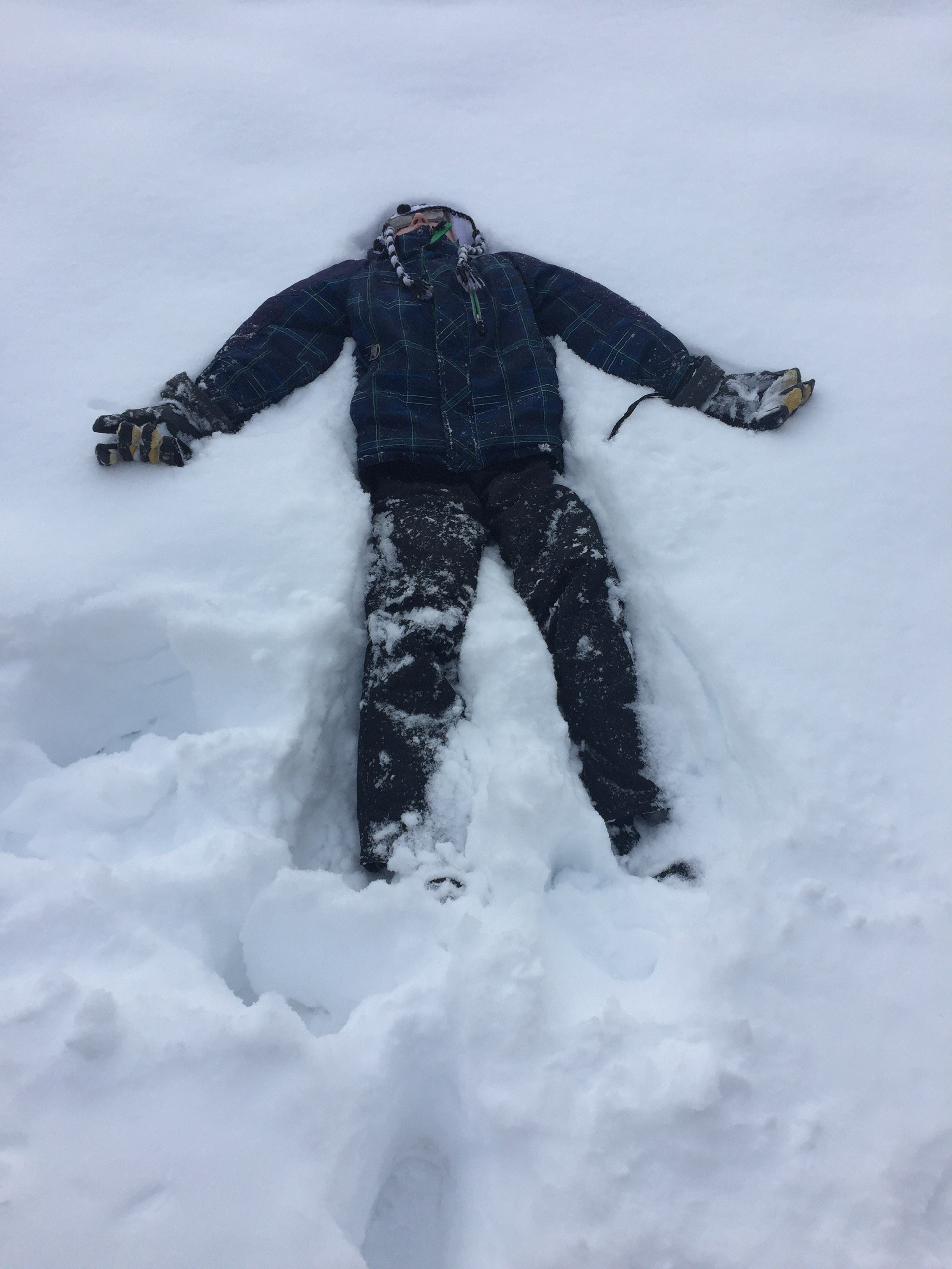 Professor flop in snow