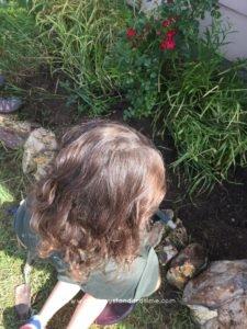 mini-me weeding flower bed