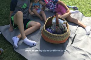 good old fashioned picnic